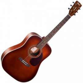 CORT GUITARE ACOUSTIQUE SERIE EARTH